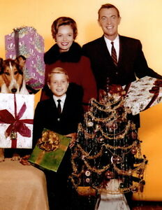 Lassie jon provost june lockhart christmas 8x10 photo for Christmas movies on cable tv tonight