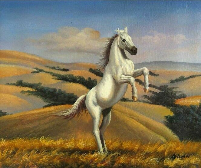3D Handsome white horse WallPaper Murals Wall Print Decal Wall Deco AJ WALLPAPER