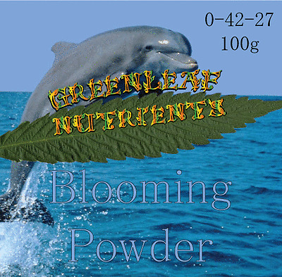 Blooming Powder Hydroponic Nutrient garden booster house shooting