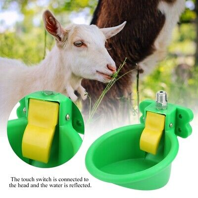 NEW Automatic Waterer for Goats Sheep livestock Water Drinker Free Shipping