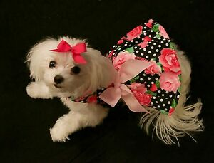 XXX-Small - Summer Roses and Dots Dress -Dog dress clothes- Puppy Apparel -TOY