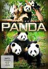 Der große Panda (2011)