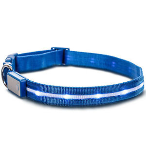 Deco Pet 18-Inch LED Dog Collar w/3 Light Modes for Night Safety, Battery-Powere