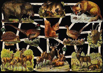 Tolle Lebensnahe Bilder Waldtiere Bogen Von 2015 Einfach Und Leicht Zu Handhaben # Glanzbilder # Ef 7376