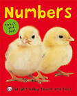 Numbers by St Martin's Press(Board book)