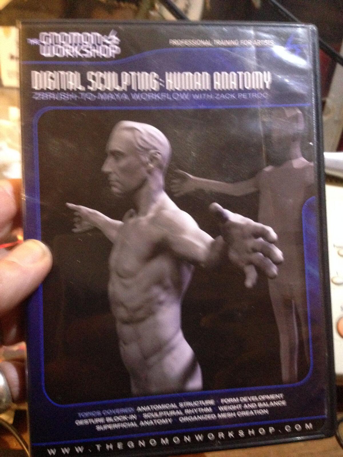 Gnomon Workshop DVD Digital Sculpting Human Anatomy ZBrush to Maya ...