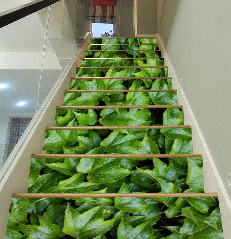 3D Fresh leaves 146 Stair Risers Decoration Photo Mural Vinyl Decal Wallpaper AU