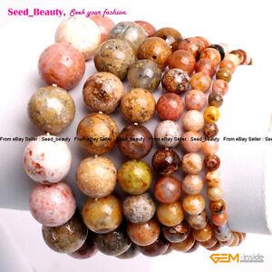 "Natural Multi Sea Agate Stone Beads Healing Beaded Jewelry Elastic Bracelet 7"""