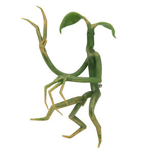 Harry-Potter-Fantastic-Beasts-Pickett-Bowtruckle-Cosplay-Costume-Pin-Figurine
