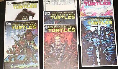 Teenage Mutant Ninja Turtles TMNT #92 Jennika Eastman Cover B Variant IDW
