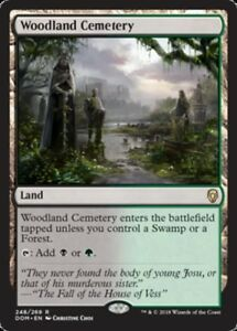 Woodland Cemetery x1 Magic the Gathering 1x Dominaria mtg card