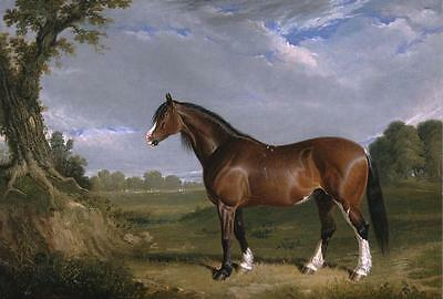 "Wall Art canvas Print Horse Classical Oil painting Printed on canvas 16x24"" P085"