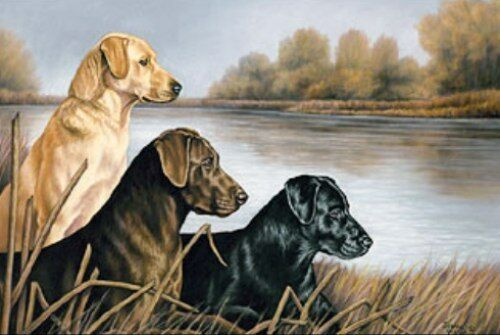 Misty Morning Companions by Joanne Graham Labradors Print 20,5x15,5