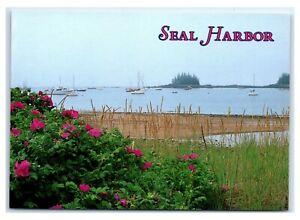 Postcard-Seal-Harbor-Maine-ME-MS884A