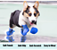 thumbnail 3 - 4Pcs-Protective-Waterproof-Dog-Cat-Rain-Boots-Silicone-Pet-Shoes-Adjustable-Paw