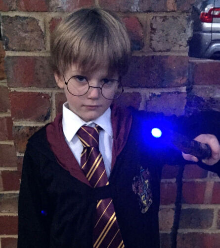 Harry Potter Book Week idea Costume Kit Robe,Wand, Glasses Tie FREE SHIPPING