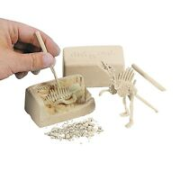 Small Dinosaur Skeleton Fossil Dig Kit