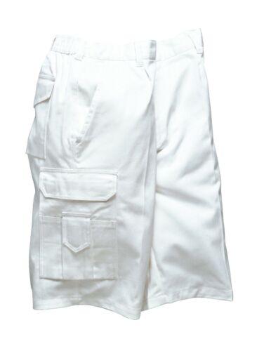 Portwest S791 Hommes peintres Workwear Shorts Pantalon pantalon poches coton