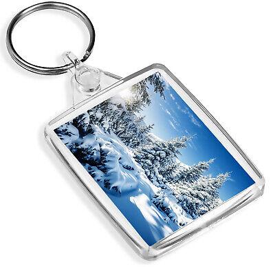 Amichevole Cool Snowy Alberi Portachiavi-ip02-sci Snowboard Neve Foresta Di Natale Regalo #8551-mostra Il Titolo Originale