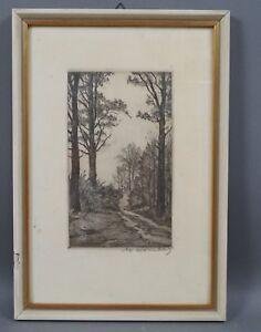 Walter Romberg (1898 - 1973) - Im Wald bei Degerloch - handsignierte Radierung
