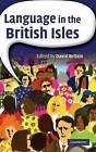 Language in the British Isles by Cambridge University Press (Hardback, 2007)