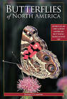 Butterflies of North America by President Jeffrey Glassberg (Paperback / softback)