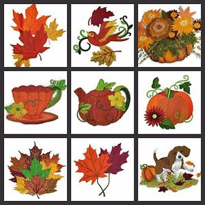 Colors In Fall  Embroidered Iron On Patches