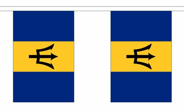 Derbyshire Flag Bunting 3m 6m 9m Metre Length 10 20 30 Flags Polyester