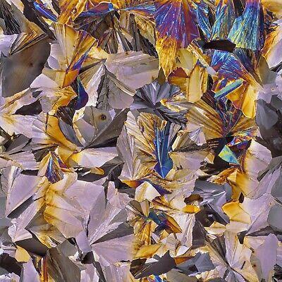 GLUTARIC ACID melt Microscope slide for polarization