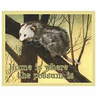Home Is Where The Possum Is Picture Refrigerator Magnet