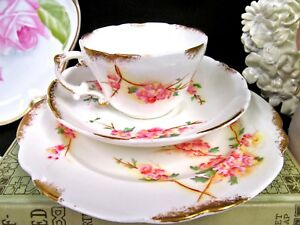 Victorian-Radfords-tea-cup-and-saucer-trio-Pink-blossom-teacup-set-painted-1890s