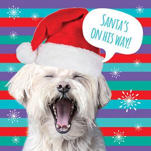 Paquete De Tarjetas De Navidad De Caridad-Santa &#039;s Coming! (10 Tarjetas de 1 Diseño)  </span>