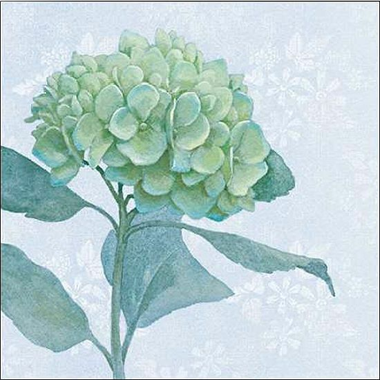 Beth Grove  blu Hydrangea i telaio-Immagine Tela Fiori Blu fioritura Modern