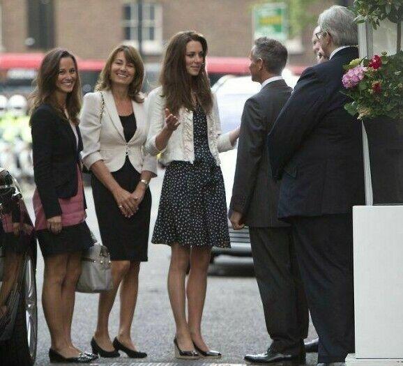 bdcbe8acc84e VERY RARE Rosa braun braun apricot ZARA colourblock three-tone dress Kleid  worn1. NWT Alberto Makali Floral ...