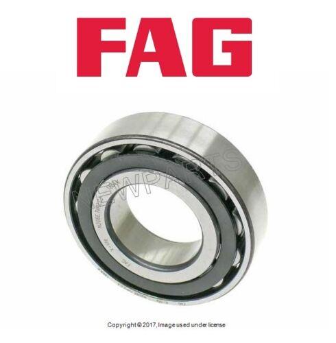 FAG N206E.TVP2.C3 Bearings