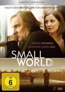 Small-World-2011
