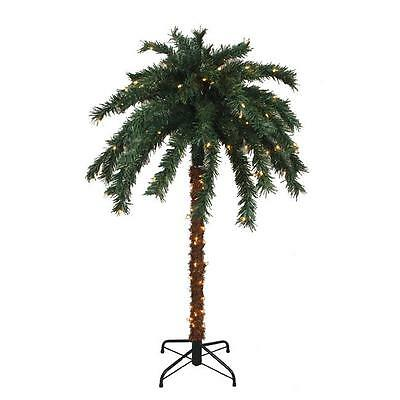 NorthLight 6 ft. Pre-Lit Tropical Outdoor Summer Patio Palm Tree Clear Lights