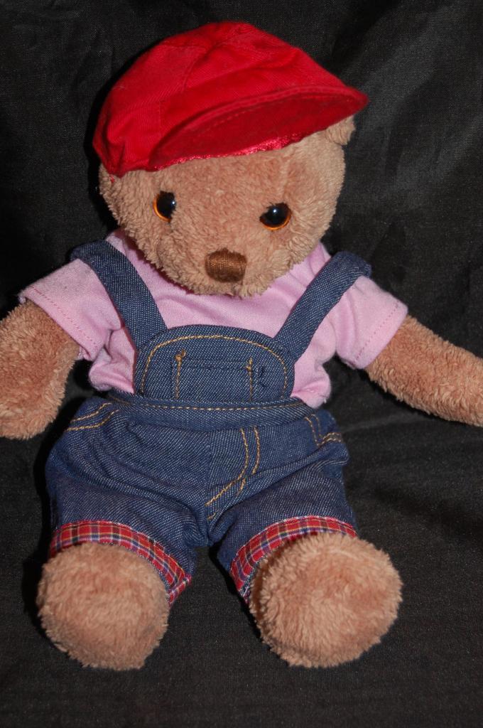 Bear Overalls Pink Shirt Denim Overalls Bear ROT Hat Commonwealth 2004  Stuffed Animal Lovey 58446b