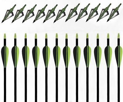 Archery 100grain Green Broadheads 31'' Archery Fiberglass Arrows Hunting Nock Fletched