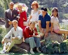 Gilligans Island Gilligan's Island Cast 8x10 Photo 002