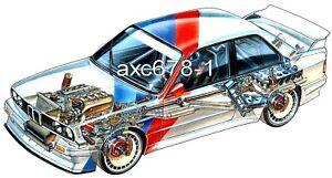 BMW M3 E30 Gruppe A / 1987 - Bild Schnittzeichnung