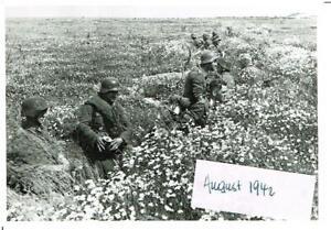 WW-2-Russland-Feldzug-battlefield-14-08-42-Kampf-Nikitskoje-Pz-P-Kompanie-693