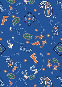 University of Wisconsin Badgers NCAA Fabric Bandana Pattern 027