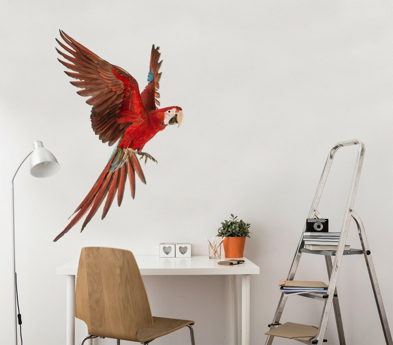 3D rot Bird B50 Animal Wallpaper Mural Poster Wall Stickers Decal Wendy