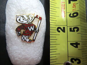 Vintage University Of Wisconsin Bucky Badger Pin Badgers Hockey