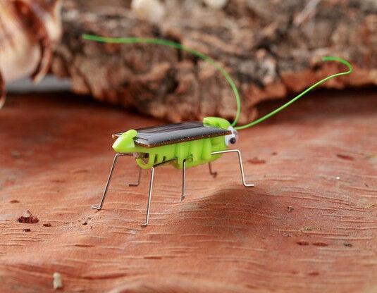Solar Panel Sun Cell Green Bug Grasshopper Cricket Insect Scary Toy Kid Children