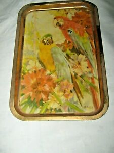 A-Vintage-Willow-Tinplate-Lithographed-Parrot-Motif-Cocktail-Meal-Serving-Tray