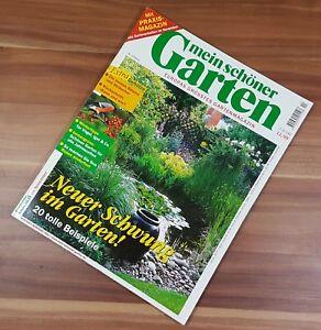 Mein Schoner Garten Magazin 11 99 Rosen Winterfest Geholze Beste Baume Und Str Ebay