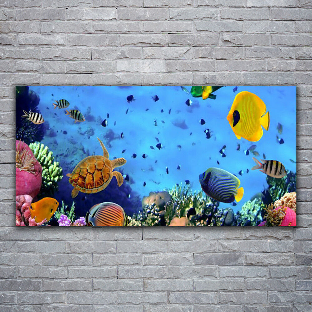 Murales cuadros de cristal agua presión sobre vidrio 120x60 arrecife bajo el agua cristal peces Netu c2ead4