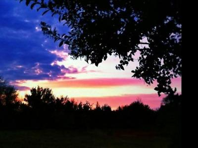 American Sunrise